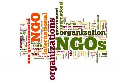 NGOs - Non Gouvernemental Organizations