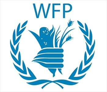 World Food Programme Jobs Wfp Jobs