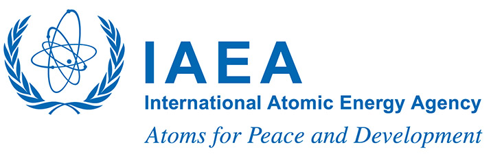 Image result for iaea